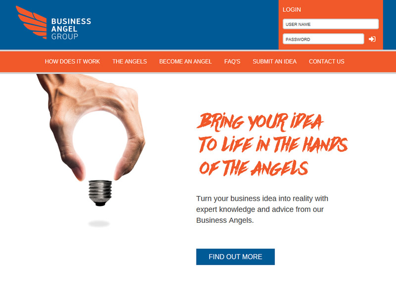 Business Angel Group